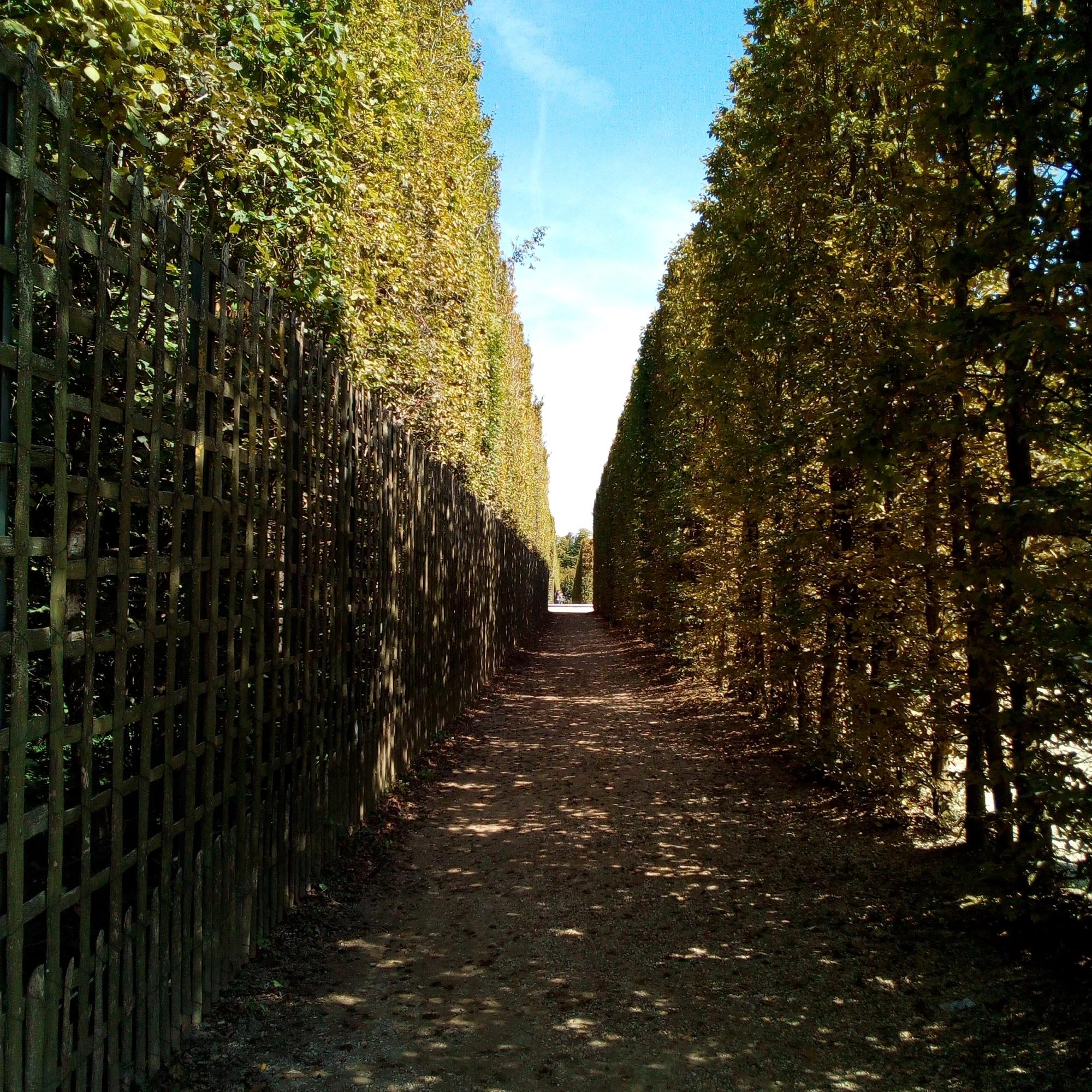 Château de Versailles, Jardins, Bosquet du Dauphin